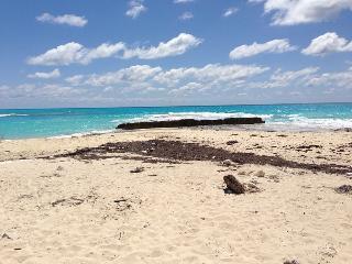 Secluded Beach in Bimini