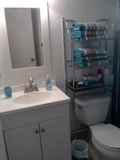 New Vanity, toilet