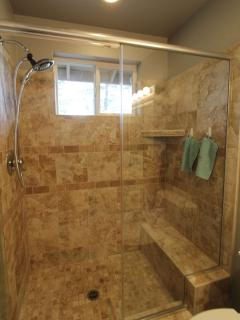 Luxury master shower
