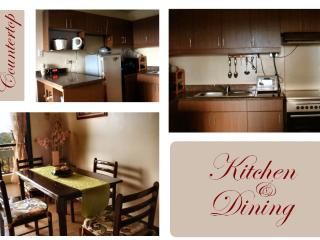 Rental Condo Kitchen & Dining Rooms