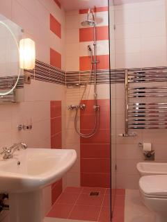 The 2nd bathroom in full view
