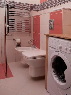 The 2nd bathroom with the washing machine