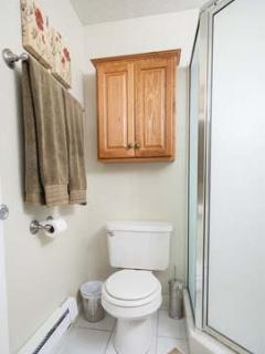 Private bath with shower in basement