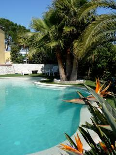 Luxury villa in Nice, quiet & close to center, A/C, heated pool