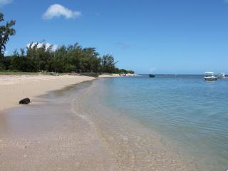 TICAZA Mauritius, Rivière Noire