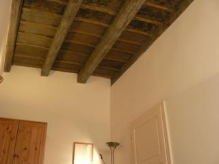 The apartment features wooden ceailing from the 16th century depicting various Renaissance themes