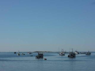 Sea-Side Memories in Cape Porpoise Maine