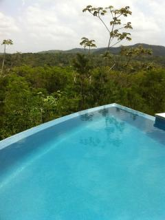 Our swimming pool overlooking the jungle