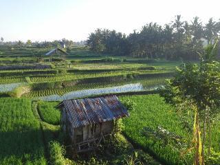 Villa Santana: New Luxury 3BR, easy walk to Ubud