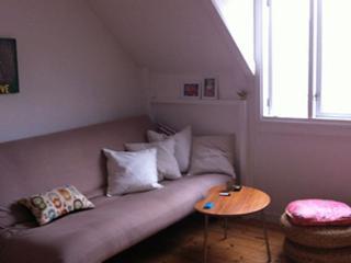 Lovely small Copenhagen apartment at Frederiksberg