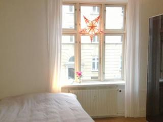 Charming Copenhagen apartment  close to Svanemoellen st.