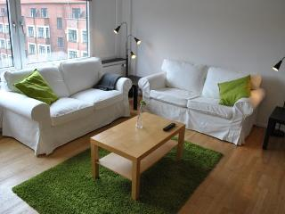 Beautiful Copenhagen studio apartment near trendy area, Copenhague