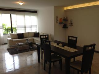 Luxury Apartment Near El Peñon and Granada