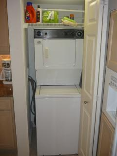 Watcher & Dryer inside the unit