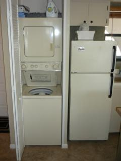 Watcher & dryer in the unit