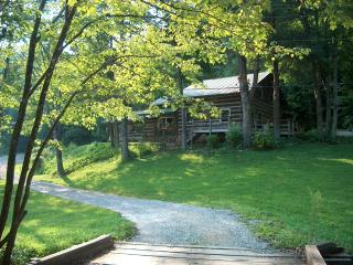 Viking Mountain Lodge - Log Cabin on Paint Creek, Hot Springs
