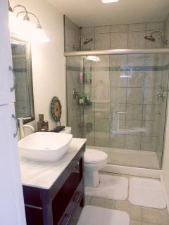 Modern Bathroom with Walkin Double Head Shower