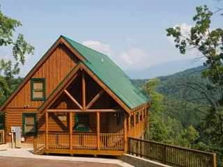 Cloud Nine At Sherwood Forest, Pigeon Forge