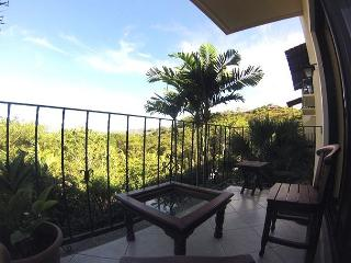 Ocean View 1 Bedroom Condo, Tamarindo