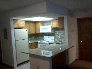 Winter Park, Fraser CO, Beautiful, granite counters etc