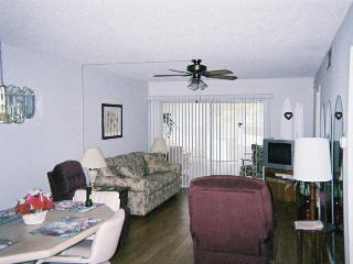 Clearwater Florida 2 Bedroom Condo - 3 Month minimum rental