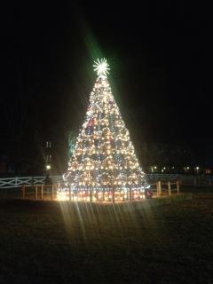 Jack Daniel Barrel Tree lighting-Dec. 2013