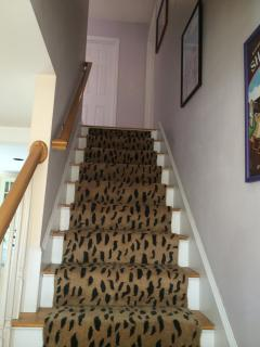 carpeted stairs to bedrooms