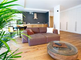 Deluxe Spacious Apartment-Central Vilnius