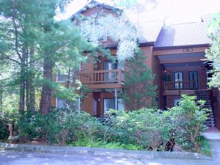 North Carolina Mountain Retreat, Cashiers