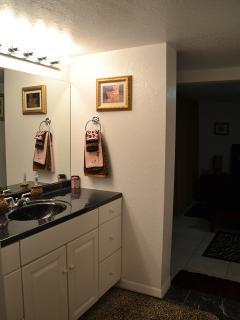 In-law suite bathroom sink