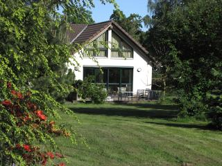Vacation Home in Coswig (Anhalt) - 624 sqft, modern, cozy, comfortable, with whirlpool (# 5066)