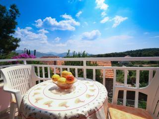 Apartments Oliva - Standard Studio with Balcony and Sea View, Orasac