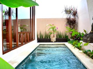 NEW! Villa Siri -1BR In Ricefield - Walk to Ubud