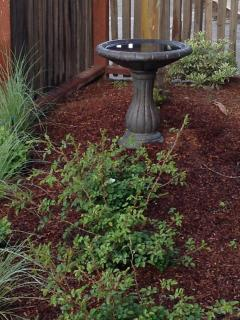 One of the many birdbaths