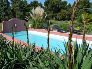 Pet-Friendly 4 Bedroom Villa with a Pool, Between Olive Trees and Lavendar, Puyricard