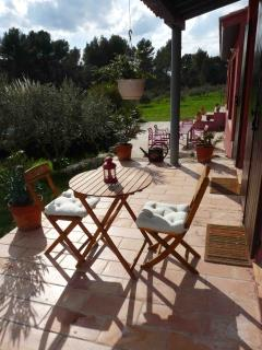 Pet-Friendly 4 Bedroom Villa with a Pool, Between Olive Trees and Lavendar