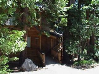 A Delight in the Woods w views, rec room - 3 bdrm, loft, 3 baths - sleeps 11.