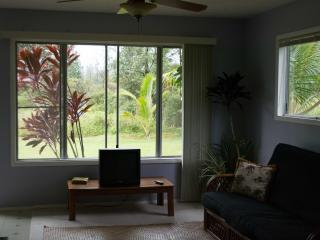 Quaint and Quite Ohana, studio/ Jr. 1 Bedroom, with garage and gear., Pahoa