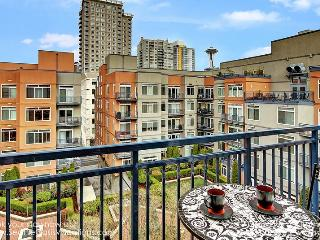 2 Bedroom 2 Bath Rooftop View Oasis, Seattle