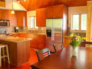 Designer kitchen - has everything - dining table looks out on mountain views
