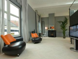 Beautiful luxurious loft in old town center Haarlem