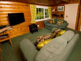Ty Coed Log Cabin Overlooking Mountains + Forests, Trawsfynydd