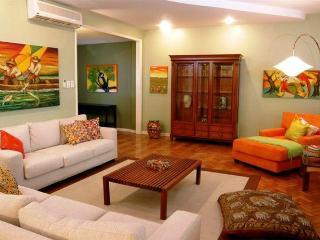 Large & Luxury 3 bds apartment, Rio de Janeiro