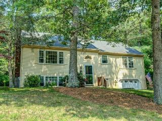 SOUTHSIDE OSTERVILLE NEAR VILLAGE & BEACH! 121868