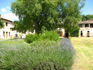 Poreta Bio Farm Suite A - Rome/1 hr 15 mins, Lenano