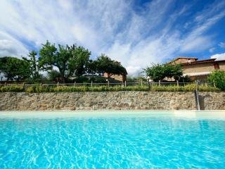 Hillside small apt in Tuscany near Florence,garden