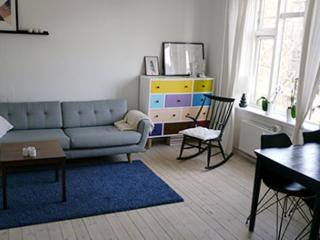 Nice Copenhagen apartment located in a trendy street, Copenhague
