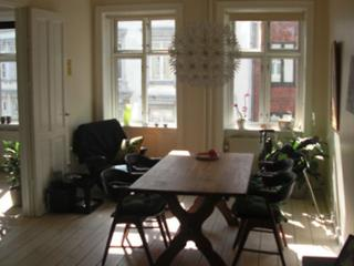 Cosy Copenhagen apartment close to the Lakes, Copenhague