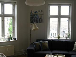 Lovely Copenhagen apartment near Frederiksberg metro