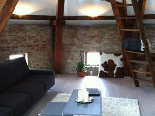 Fantastic penthouse apartment near Noerreport station, Copenhague